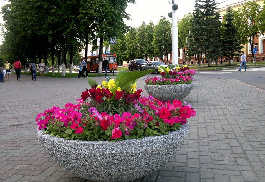 Цветочница бетонная Плато