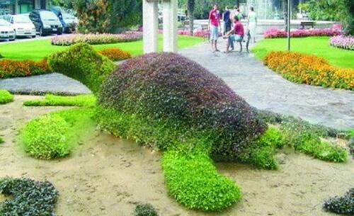 Топиарная фигура Морская черепаха