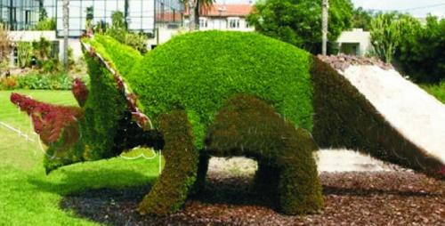 Топиарная фигура Динозавр рогатый